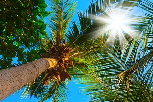 Sabbatical: Anspruch auf Urlaub besteht während der Freistellungsphase nicht.